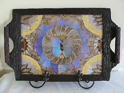 Vintage Brazilian Butterfly Wing Tea Tray Black Forest Collector Taxidermy Old