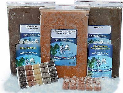 18 x Squid 100 gram Blister Packs - Premium Frozen Fish Food