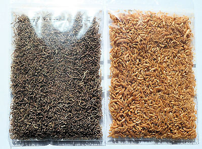 10g freeze dried grade A bloodworm 10g gammarus fish food discus angels malawi