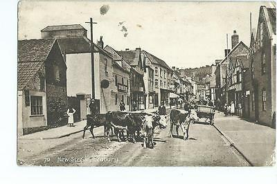 Herefordshire printed view of cattle in Ledbury New Street