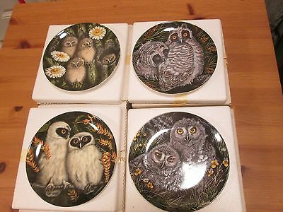 4 X Wedgwood Collectors Plates - The Baby Owls by Dick Twinney (No's 5-8) Boxed