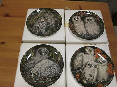 4 X Wedgwood Collectors Plates - The Baby Owls by Dick Twinney (No's 9-12) Boxed
