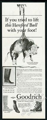 1931 champion polled Hereford cattle bull Santo's Gem pic B.F. Goodrich print ad