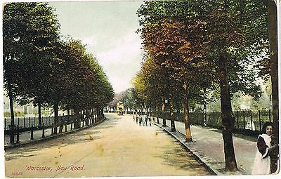 Vintage 1900s POSTCARD: WORCESTER, NEW ROAD: TRAM: FRANCIS FRITH HAND COLOURED
