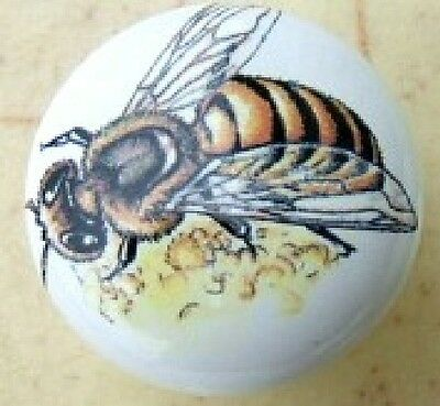 Ceramic Cabinet Knobs Knob w/ Bee Honey INSECT BUGS