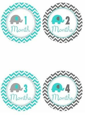 Baby Monthly Photo Stickers Teal Gray Elephants