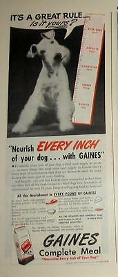 1946 Fox Terrier Gaines dog food Ad