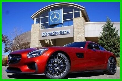 2017 Mercedes-Benz AMG® GT 2017 AMG GT Coupe 2017 Coupe New Turbo 4L V8 32V Automatic RWD Premium