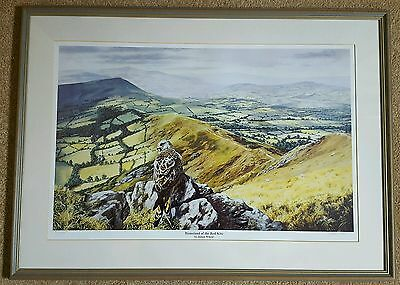 Julian Wheat Signed & Framed 'homeland Of The Red Kite' Large Print