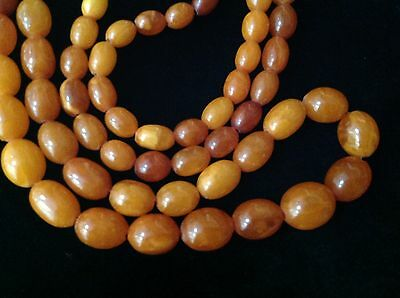 Genuine Baltic Butterscotch Amber Necklace Antique 56g