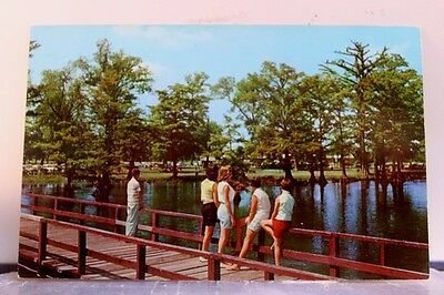 Scenic Reelfoot Lake State Park Public Pier Postcard Old Vintage Card View Post