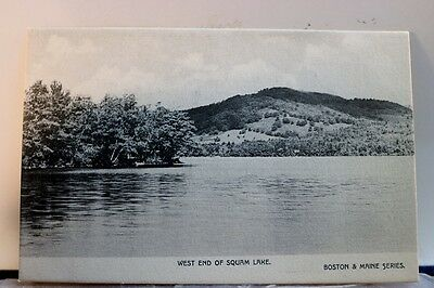 Scenic West End Of Squam Lake Postcard Old Vintage Card View Standard Souvenir