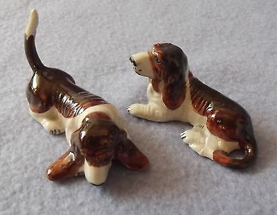 BASSET HOUND beautiful pair of little dogs