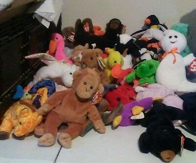 Original Beanie Baby Massive Lot of 40 Beanies!