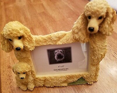 Apricot poodle Family Photo frame~Holds 4x 6 Photo~NIB