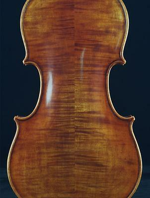 Stradivarius Kruse 1721 4/4 Violin #6427. Excellent work