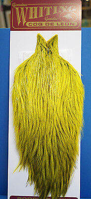 WHITING Coq de Leon Cape BADGER dyed Fluo Yellow Chartreuse