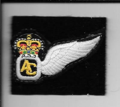 Army Air Corps Air Crew 1/2 Wing Brevet