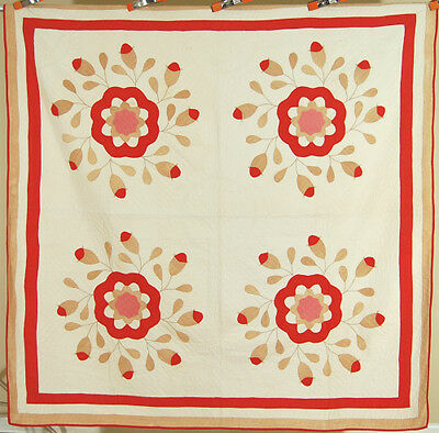 WELL QUILTED Vintage 1880's Turkey Red & Tan Whig Rose Applique Antique Quilt!
