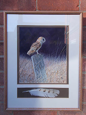 Original Watercolour Painting By Peter Beeson Barn Owl Feather Framed