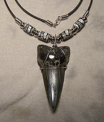 """Giant 2 5/16"""" Mako Shark Tooth Teeth Necklace Fossil Jaw Megalodon Fishing"""