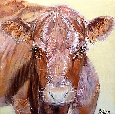 Original Cow Painting On Canvas - Limousin Farm Cattle Picture By M James