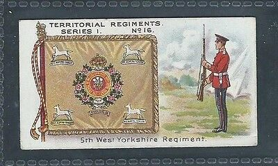 Taddy Territorial Regiments No 16 5Th West Yorkshire Regiment