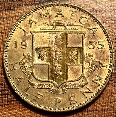 1955 Jamaica Half Penny Queen Elizabeht II Coin AU / UNC Condition