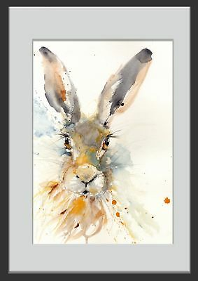 JEN BUCKLEY signed LIMITED EDITON wildlife art PRINT of my original HARE