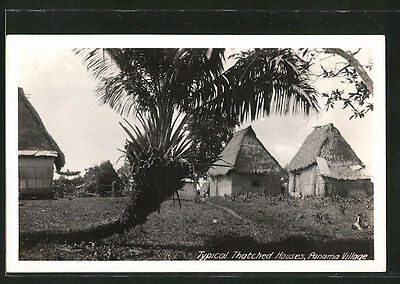 alte AK Panama, Village, typical Thatched Houses