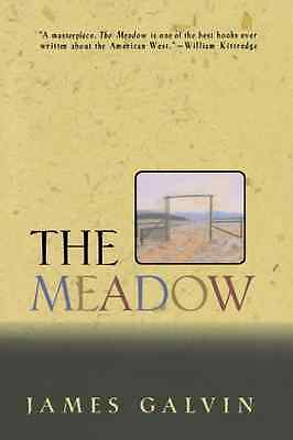 The Meadow - Paperback NEW Galvin, James 2005-01-17