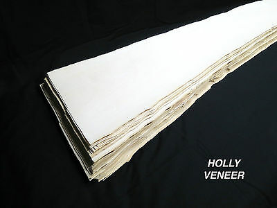Holly * 1/16 * Veneer American lumber white wood, kd 5 sq ft