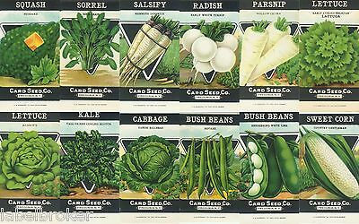 12 Vintage Seed Packet Lot Nos C1920 Garden Lithograph General Store Pack G&w