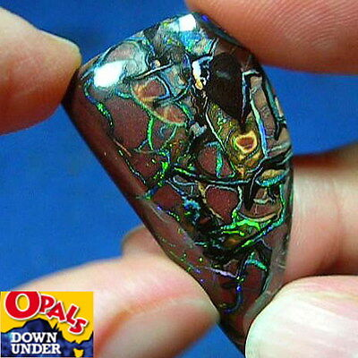 Green Violet Turquoise 29ct Natural Australian Solid Koroit Boulder Opal * Video