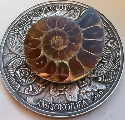 1000 Francs 2016 Burkina Faso - Welt der Evolution - Ammonoidea / Ammonite