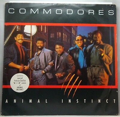 Commodores Animal Instinct 12""