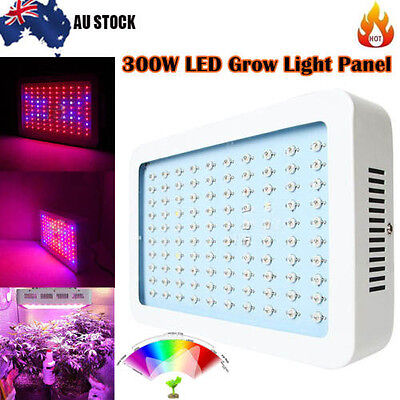 300W 100 LED Grow Light Panel Full Spectrum Lamp Indoor Hydroponic Plant Flower