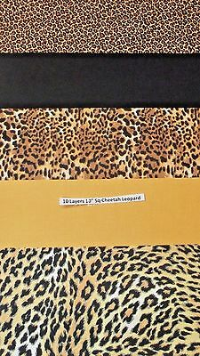 10 pack 10 inch cotton quilting squares Cheetah Leopard 5 different fabric