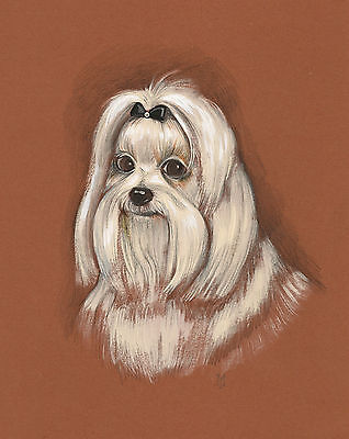 Print Of Painting Maltese 8X10 Ryta Dog Portrait Realism Toy Artwork Pet Picture