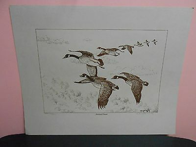 "1980 Richard M. (R.m.) Prunty Print Canadian Geese ""northward Bound"" 100/800"