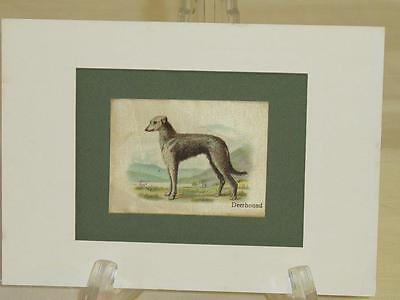 Lot of 7 Antique/Vintage Deerhound Tobacco Cards EUC