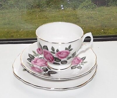 Dorchester English Fine Bone China. Pink Rose Trio Cup Saucer Plate
