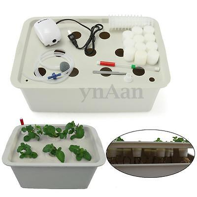 6/11 Holes Plant Site Hydroponic System Grow Bubble Tub DWC Deep Water Culture