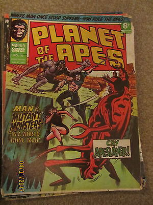 Marvel Comic Planet Of The Apes No 30 May 17Th 1975