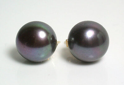 11.5mm AAA quality peacock black freshwater pearl & 9 carat gold earrings