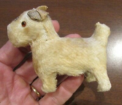 EArly Primitive Mohair Sealyham Terrier WHite Glass Eye Middle Squeeze In Middle