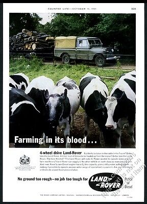 1962 Land-Rover SUV pickup truck farm cow herd color photo vintage print ad