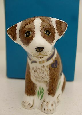 Royal Crown Derby COLIN the PUPPY Paperweight ltd edt 500 only UK new exclusive