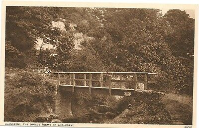 Old Postcard-ANGLESEY-LLANGEFNI-THE DINGLE-Wales-by Photochrom