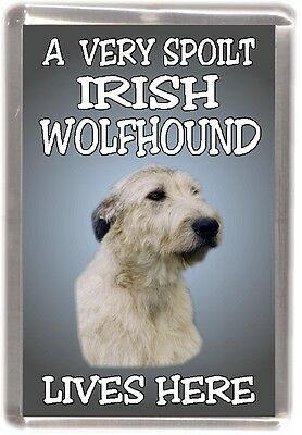"Irish Wolfhound Dog Fridge Magnet  ""A VERY SPOILT IRISH WOLFHOUND LIVES HERE"""